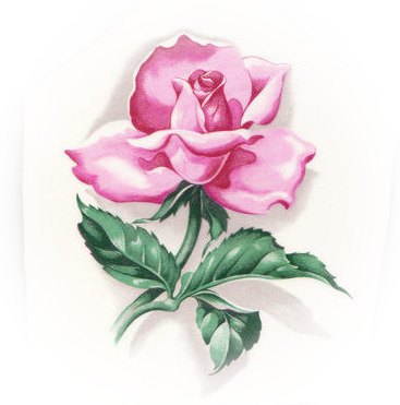 Pink Rose & Dark Green Leaves Broken China Mosaic Focal